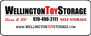 Wellington Toy Storage