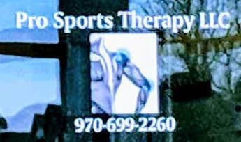 Prosportstherapy